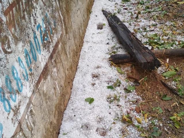 उत्तर छत्तीसगढ़ में बारिश के साथ गिरे ओले, गेंहू की फसल को नुकसान