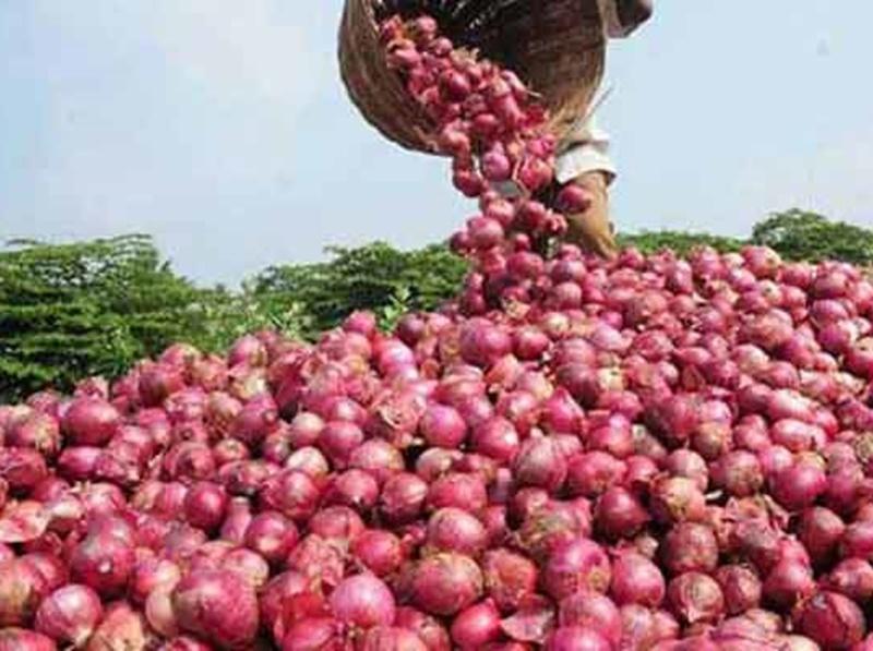onion price hike : एक पखवाड़े में प्याज के भाव डेढ़ गुना से ज्यादा बढ़ने के बाद एक्शन में सरकार