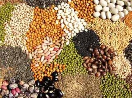 मध्यप्रदेश में बनेगा जैविक बीज बैंक, फसलों को बचाने की अनूठी कवायद