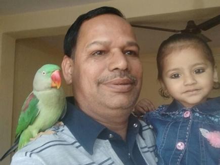 दो साल बाद लौटा तोता, परिवार को देखते ही बोला 'पापा'