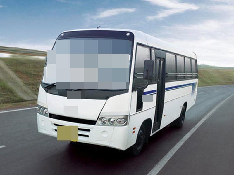 रायगढ़ में खड़े ट्राले से टकराई यात्री बस, 29 घायल