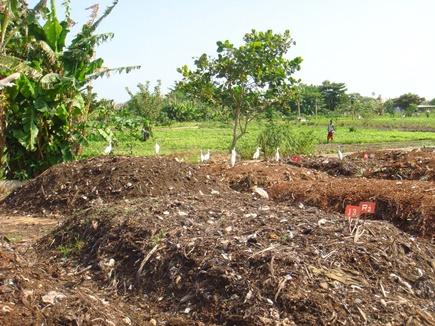 National Youth Day: मिट्टी से बनाई उन्नत जैविक खाद और खोली बेहतर उत्पादन की राह