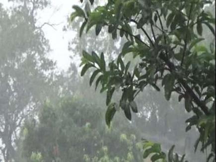 MP में मानसून की अपेक्षा के अनुसार बारिश नहीं