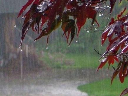 मध्यप्रदेश में अनेक स्थानों पर बारिश, तापमान में फिर गिरावट का दौर