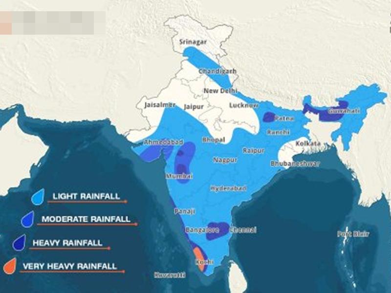 Monsoon Update: फिर सक्रिय हुआ मानसून, अगले 24 घंटों में यहां हो सकती है भारी बारिश