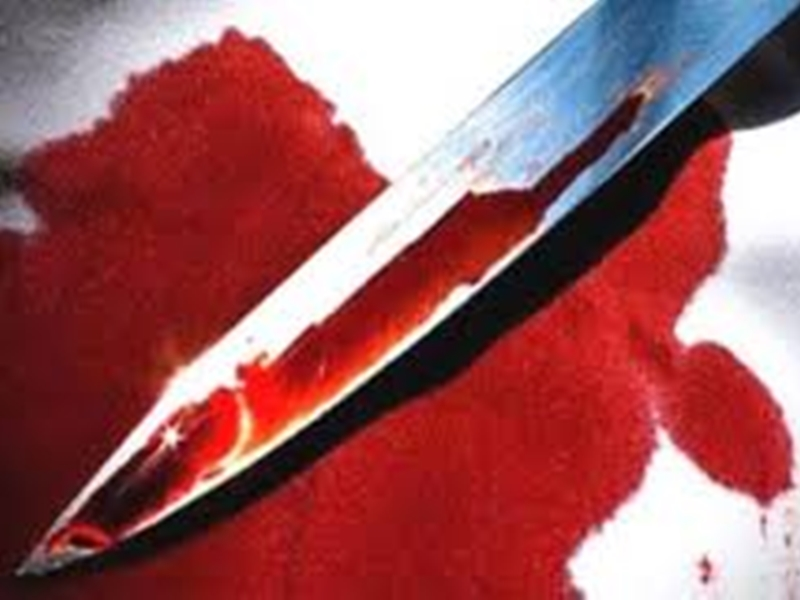 Rajasthan Crime: देवर ने की भाभी की हत्या, दामाद ने ले ली ससुर की जान