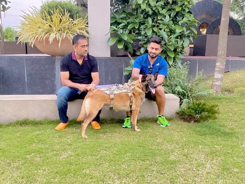 Rishabh Pant meets MS Dhoni: धोनी के फार्म हाउस पर कुत्तों के साथ खेलते दिखे रिषभ पंत