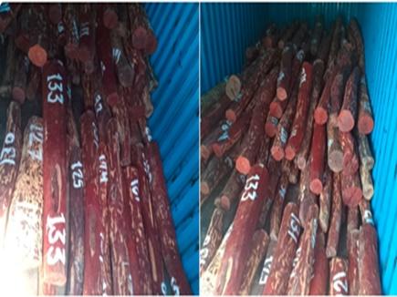 दिल्ली पुलिस ने तीन तस्कर पकड़े, 4.5 करोड़ कीमत लाल चंदन की लकड़ी बरामद