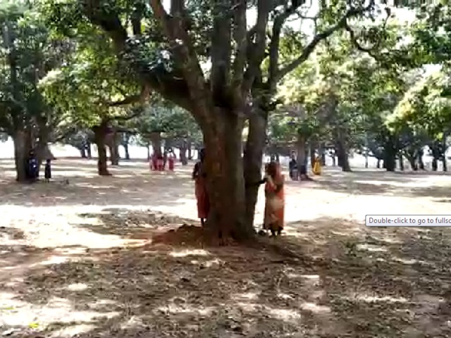 पेड़ पर लिपटकर बोले आदिवासी, अब नहीं चलाएंगे कुल्हाड़ी, देखें VIDEO