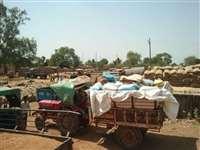 Sheopur News : बंद रही बोली तो किसानों का फूटा गुस्सा, मंडी कर्मचारियों ने खुद को ताले में बंद किया