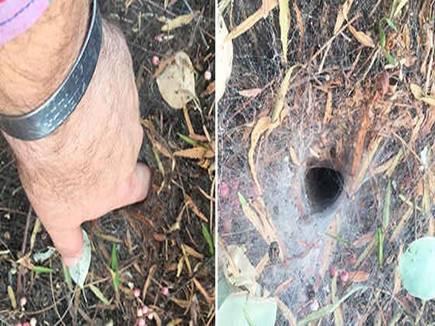 spider hole 16 07 2017