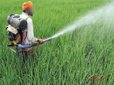 श्योपुर जिले में फसल पर कीटनाशक के छिड़काव के दौरान दो किसानों की मौत