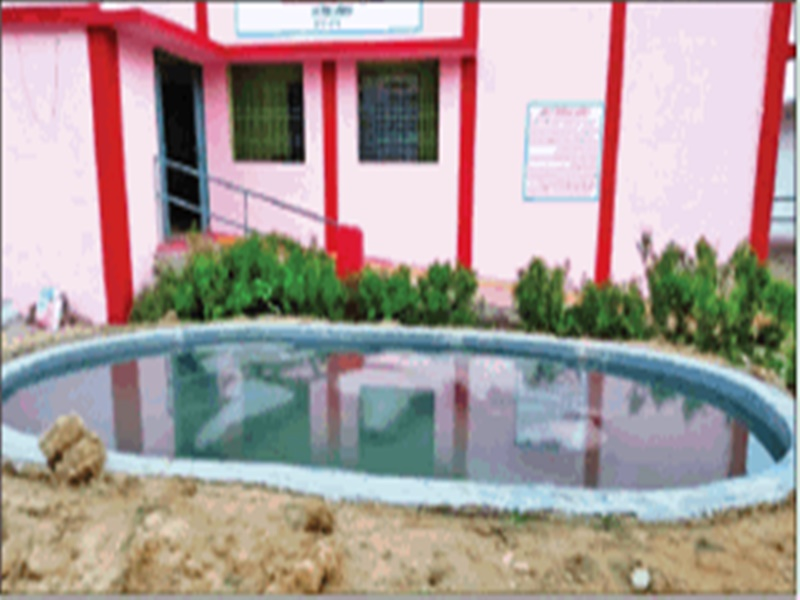 Madhya Pradesh : बड़े दिलवाले हैं ये हेडमास्टर, सैलरी से सरकारी स्कूल में बना डाला स्वीमिंग पूल