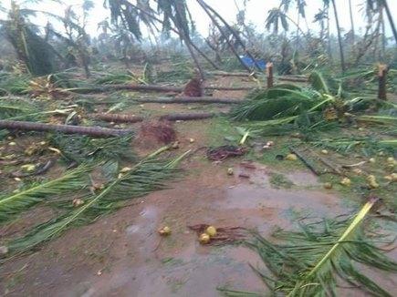 तितली मचा रहा ओडिशा में तबाही, आंध्र के अलग-अलग इलाकों में 8 की मौत