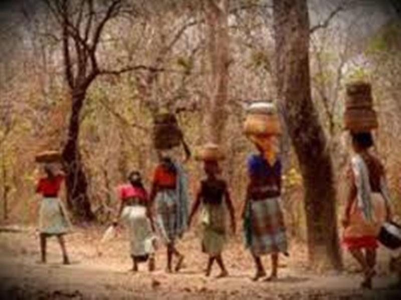 37 साल बाद कानून बनाकर आदिवासियों को कर्जमाफी देगी कमलनाथ सरकार