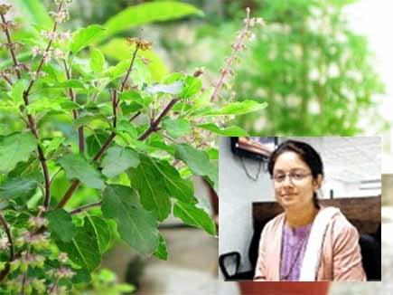प्रदूषण घटाने के लिए सात साल से घूम-घूमकर लगा रहीं तुलसी का पौधा