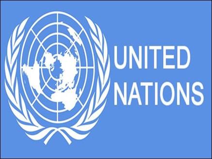 भारत ने UN की NGO समिति समेत छह संस्थाओं के चुनाव जीते