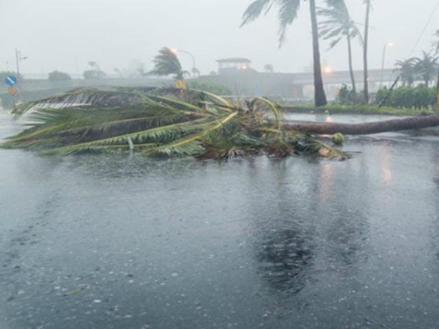 Weather Update : आंधी-बारिश से 50 से ज्यादा लोगों की मौत, इन 7 राज्यों में अलर्ट जारी