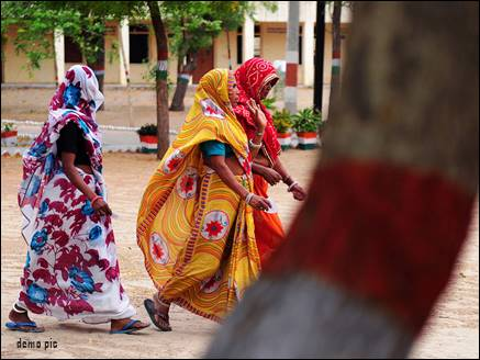 women thief gang rajasthan 12 08 2017