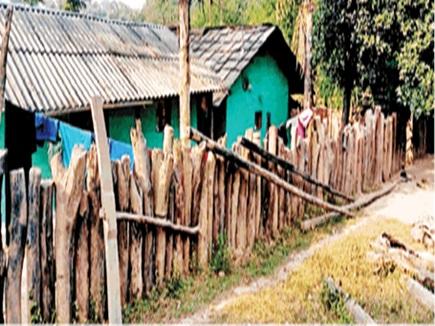 यहां लाखों की लकड़ी से बना रहे घरों की बाड़, खूब हो रही जंगल की कटाई